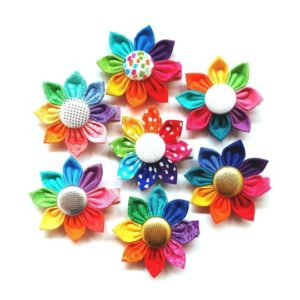 Rainbow Flower Clips
